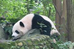 Pandas002