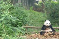 Pandas014